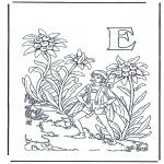 Diverse - Alphabet E