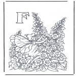 Diverse - Alphabet F