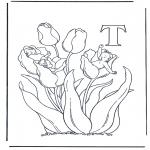 Diverse - Alphabet T