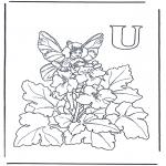 Diverse - Alphabet U