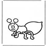 Dyre-malesider - Ant