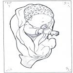 Tema-malesider - Baby 2