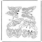 Dyre-malesider - Butterflies 1