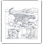 Dyre-malesider - Cheetah 1