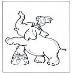 Diverse - Circus olifant