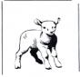Coloring sheet lamb