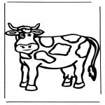 Dyre-malesider - Cow 1