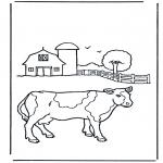 Diverse - Cow