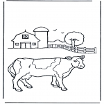 Dyre-malesider - Cow on farm