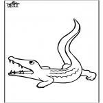 Dyre-malesider - Crocodile 3