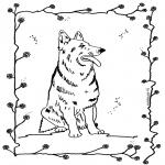 Dyre-malesider - Dog 4