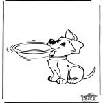 Dyre-malesider - Dog