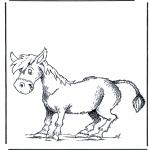 Dyre-malesider - Donkey