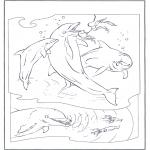 Dyre-malesider - Dophins 2