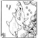 Dyre-malesider - Dophins 5