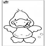 Dyre-malesider - Duck 6