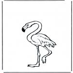 Dyre-malesider - Flamingo
