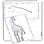 Dyre-malesider - Giraffe and sea lion