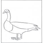Dyre-malesider - Goose