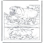 Dyre-malesider - Hippo 1