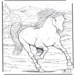 Dyre-malesider - Horse 4