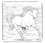 Horse 4