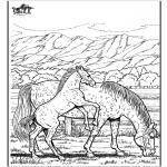 Dyre-malesider - Horse 6