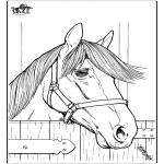 Dyre-malesider - Horse 7
