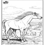 Dyre-malesider - Horse 9