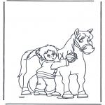 Dyre-malesider - Horse brushing
