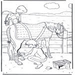 Dyre-malesider - Horse care
