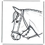 Dyre-malesider - Horse head 2
