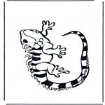 Dyre-malesider - Iguana