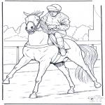 Diverse - Jockey