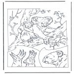 Dyre-malesider - Koala