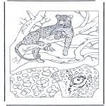 Dyre-malesider - Leopard 1