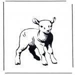 Dyre-malesider - Little lamb 2