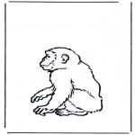 Dyre-malesider - Monkey 2