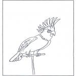 Dyre-malesider - Parrot 4