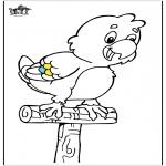 Dyre-malesider - Parrot 5