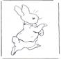 Pieter Rabbit 4