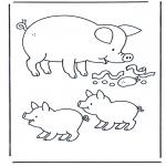Dyre-malesider - Pig