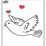 Dyre-malesider - Pigeon 1
