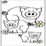 Dyre-malesider - Pigs 4