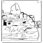 Dyre-malesider - Polar bear and sea lion