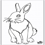 Dyre-malesider - Rabbit 4