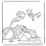 Dyre-malesider - Raccoon and kolibri