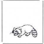 Dyre-malesider - Raccoon