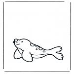 Dyre-malesider - Seal 1