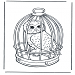Dyre-malesider - Snow owl